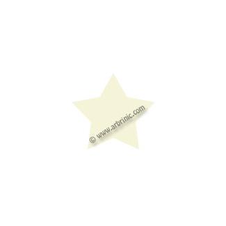 KAM Snaps T5 - Natural B37 - 20 STAR sets