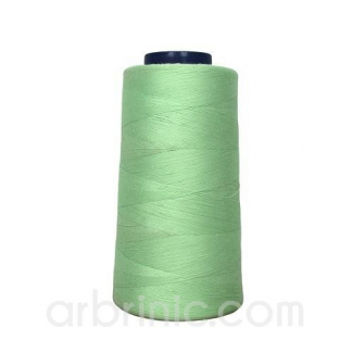 Cône fil polyester Vert Clair (2743m)
