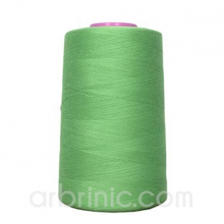 Polyester Serger and sewing Thread Cone (4573m) Apple Green