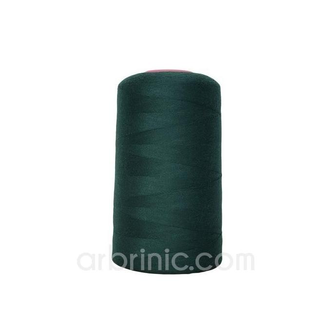 Cône fil polyester Vert de Chrome (4573m)
