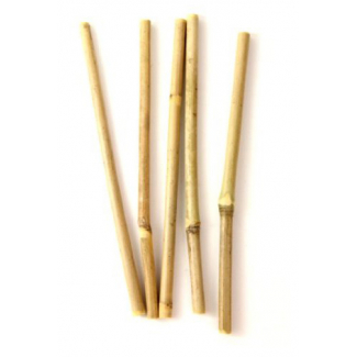 Bamboo drinking straws : the ecological straw (pack of 5 straws)