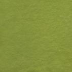 Micro-éponge de coton Bio GOTS Vert Gazon