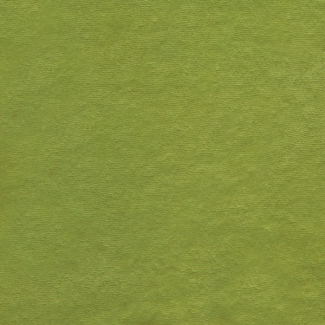 Organic cotton micro terry grass green