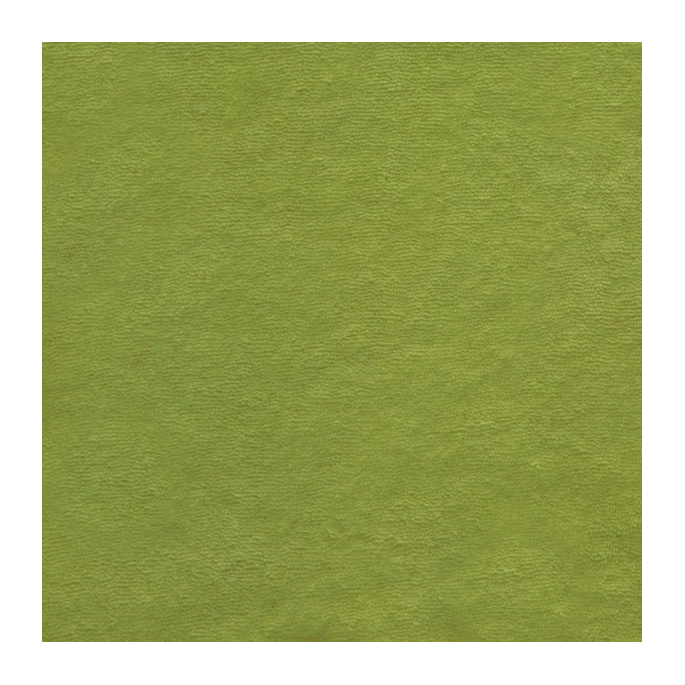 Organic cotton micro terry grass green