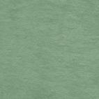 Celadon green organic cotton micro loop terry