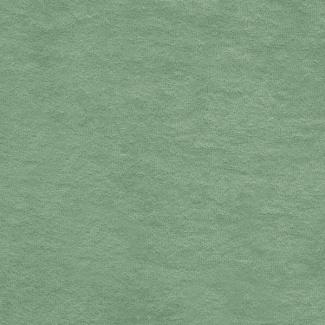 Micro-éponge de coton Bio GOTS 290g Vert Celadon