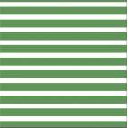 Organic cotton Knit Colourful Stripes Green Cloud9