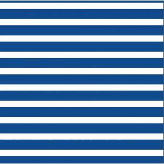 Coton Bio Interlock Colourful Stripes Blue Cloud9
