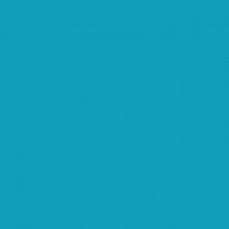 PUL USA turquoise (per 10cm)